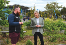 Windermere Primary plants seeds of learning